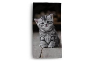 DIMUS, https://konsimo.pl/kolekcja/dimus/ Ręcznik kot szary/czarny - zdjęcie